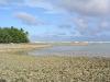 Wau Island